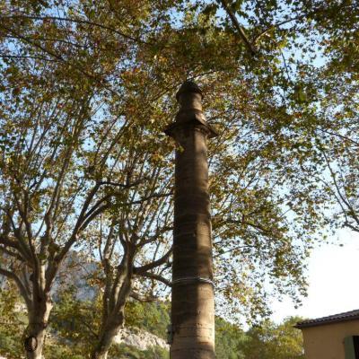 Column of Petrarch