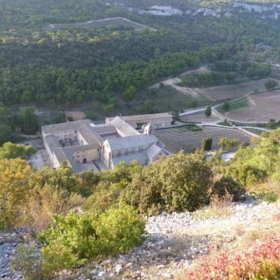 Vue depuis la route qui surplombe l'abbaye