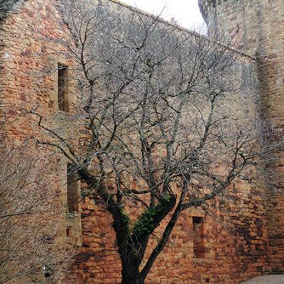 vestiges logis renaissance castelnau