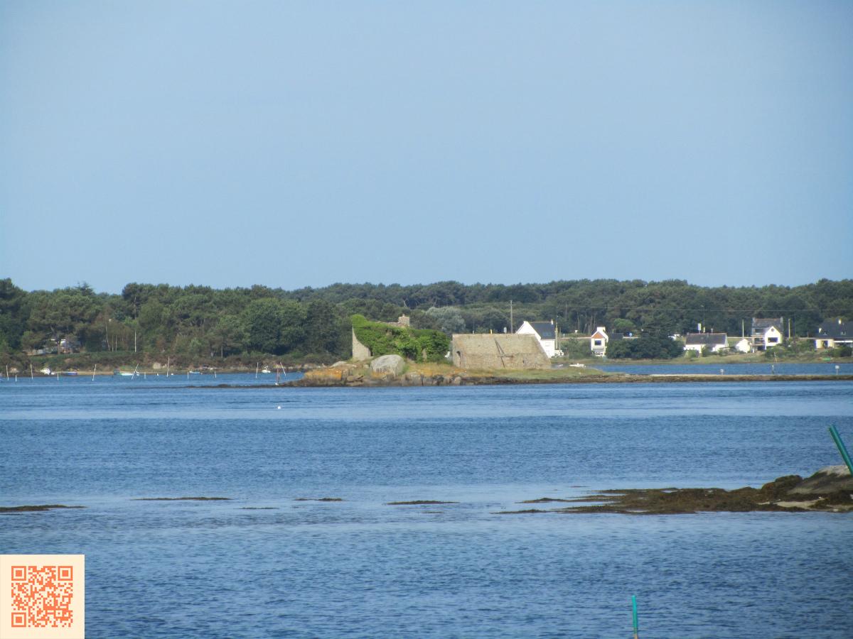 Vue de l'île de Miniavec, depuis Saint-Cado