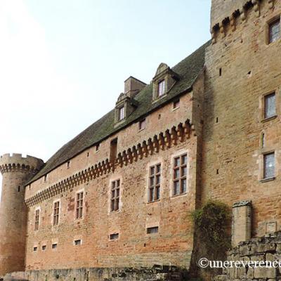 vue façade est à l'entrée castelnau